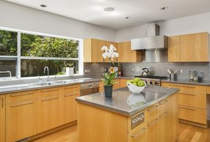 Modern Kitchen with Hardwood floors, Stainless Steel, Stainless steel counters, L-shaped, European Cabinets, Flush