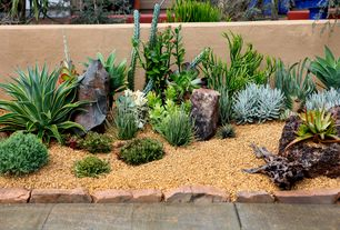 Mediterranean Landscape/Yard with Blue Chalk Fingers Succulent, Agave Desmettiana Varigata, Raised beds, Fence
