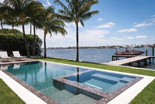 Contemporary Swimming Pool with Pathway, Infinity Edge Pool, Real Palm Trees Carpentaria Palm Tree: Large, Pool with hot tub
