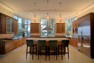Contemporary Kitchen with Glass panel, Built In Refrigerator, U-shaped, Undermount sink, can lights, European Cabinets, Flush