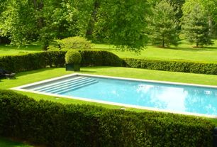 Traditional Swimming Pool with Box hedge, Fence, Inground pool, Lawn, Outdoor pool, Lap pool, Private backyard, Grass