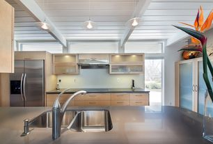 Contemporary Kitchen with bird of paradise, Wood plank ceiling, Light Grey with Z4, Clear Glass Disc Min-Pendant