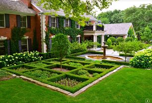 Traditional Landscape/Yard with Green Velvet Boxwood, The Planting Tree Wintergreen Boxwood, Green Hydrangea 3 Seeds