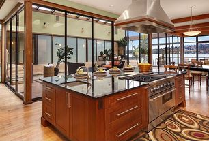 Contemporary Kitchen with Flush, Island Hood, One-wall, Pendant light, can lights, Flat panel cabinets, Kitchen island