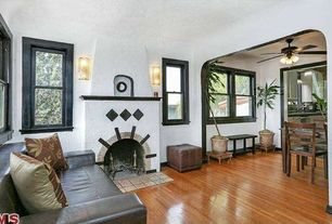 Eclectic Living Room with Hardwood floors, Fireplace, Standard height, double-hung window, Ceiling fan, Wood frame windows
