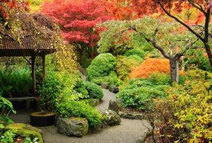 Asian Landscape/Yard with Japanese maple tree, Gravel landscape, Outdoor seating, Japanese garden