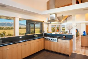 Contemporary Kitchen with L-shaped, European Cabinets, Flush, slate tile floors, Soapstone, High ceiling, Soapstone counters