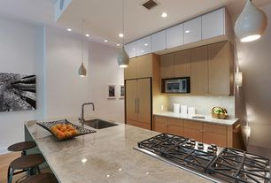 Modern Kitchen with One-wall, can lights, European Cabinets, Hardwood floors, Paint, electric cooktop, Standard height, Flush
