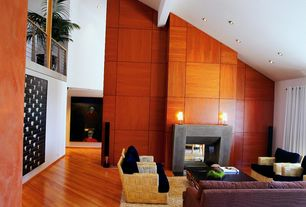 Contemporary Living Room with High ceiling, can lights, Hardwood floors, insert fireplace, Fireplace, Loft, Exposed beam