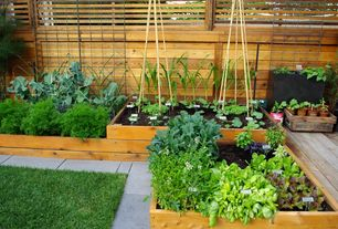 Contemporary Landscape/Yard with Basil Garden-in-a-Bag Organic Herb Collection, Raised beds, Park Seed Raised Garden Bed