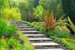 Tropical Landscape/Yard with Pathway, Arbor, Gate