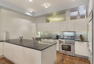 Contemporary Kitchen with flush light, European Cabinets, Corian counters, Hardwood floors, Flush, Undermount sink, L-shaped