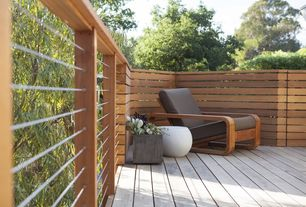 Contemporary Deck with Deck Railing, Allmodern.com outdoor lounge chair, Paint