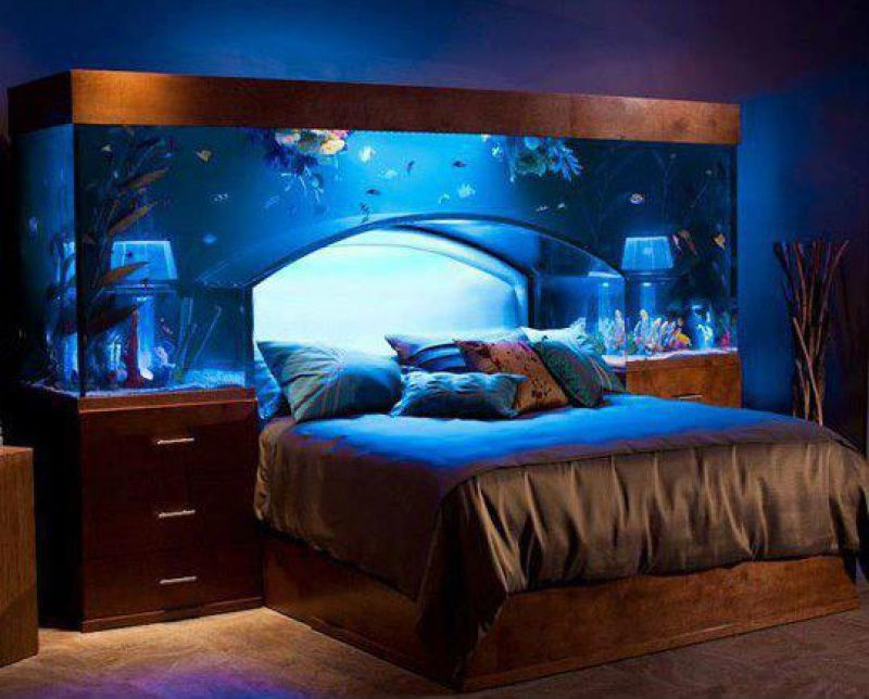 Eclectic Master Bedroom with Fish tank, Aquarium bed, Acrylic Tank Manufactorers, Paint