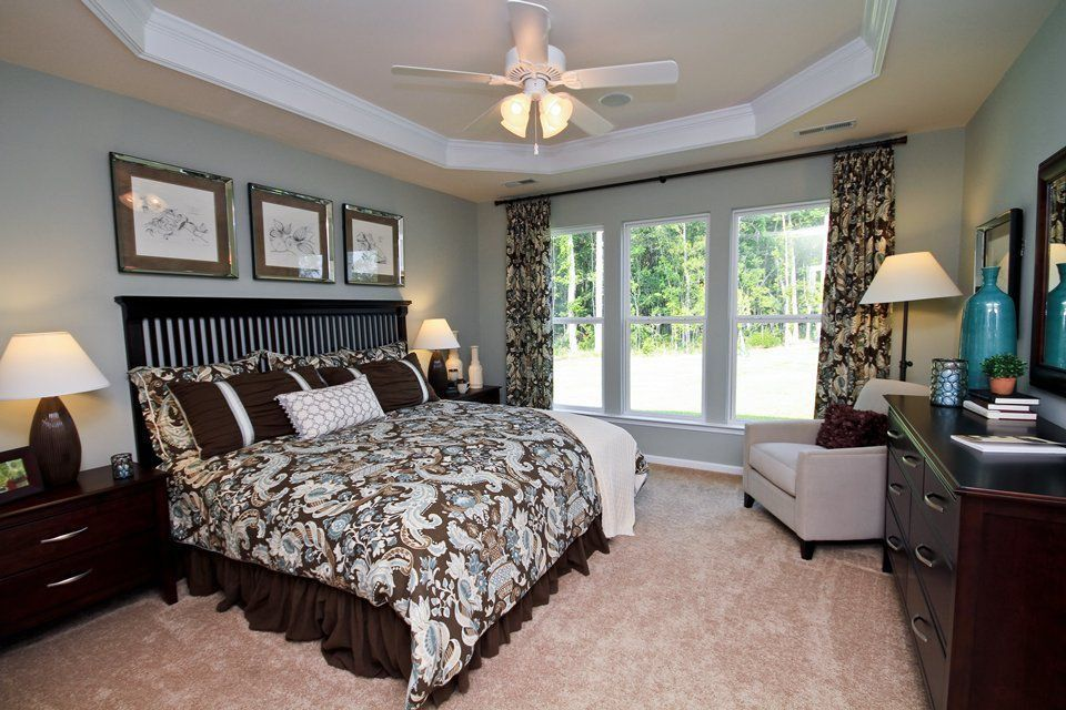 Traditional Guest Bedroom with double-hung window, Carpet, Ceiling fan, High ceiling, Crown molding