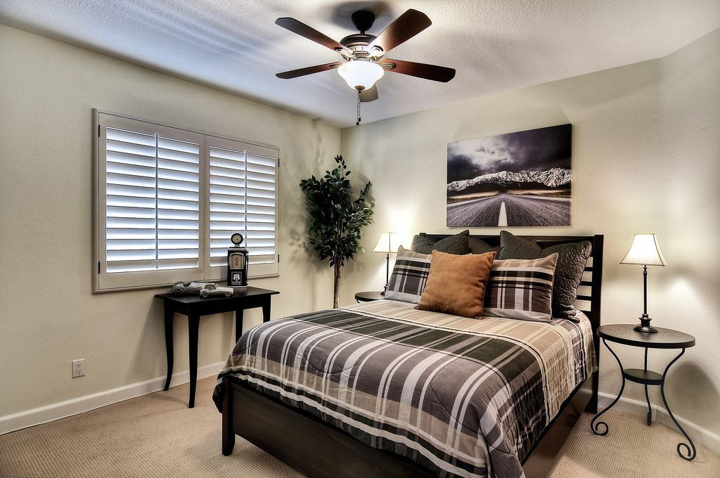 Traditional Guest Bedroom with Standard height, Ceiling fan, Carpet