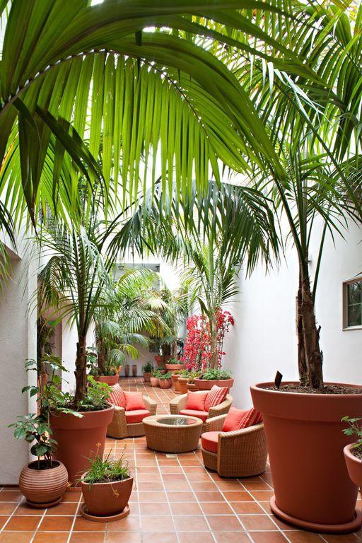 Tropical Patio with exterior terracotta tile floors, exterior tile floors