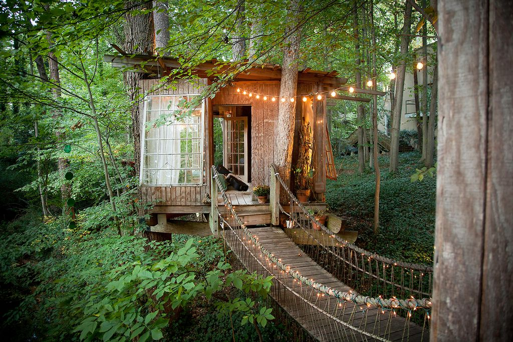 Rustic Playroom with Tree house, Hardwood floors, French doors, Standard height, Pathway, Casement