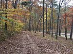Acres For Sale With Lake In Woodland Cove Subdivis, Rainbow City, AL