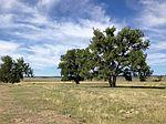 Fiddleback Ranch Cir, Kiowa, CO
