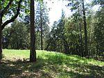 12501 Arrow Head Rd, Pine Grove, CA