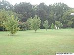 3910 Old Hwy # 431, New Hope, AL