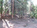 807 Lake Ridge Rd, Westwood, CA