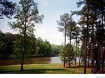 17155 Hidden Lake Ln, Rockville, VA