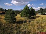 37 Musket Ct, Pagosa Springs, CO