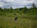 Cluster Springs Rd, South Boston, VA