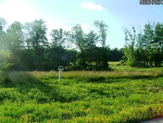 2279 Quarry Top Dr, Wadsworth, OH 44281