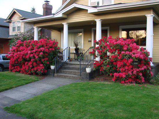6924 SE 19th Ave, Portland, OR 97202