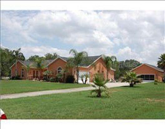 2513 Martucci Rd, Seffner, FL 33584