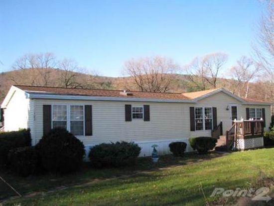 123 Mill Creek Rd, Otego, NY 13825