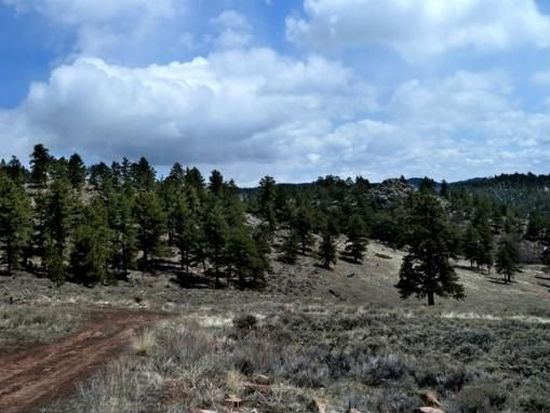 222 Beartrap Rd, Red Feather Lakes, CO 80545