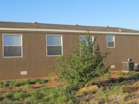 9124 County Road 7630, Wolfforth, TX 79382