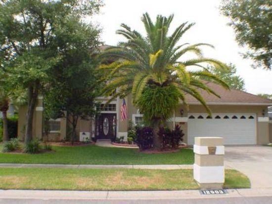 12903 Oak Shadow Pl, Tampa, FL 33624