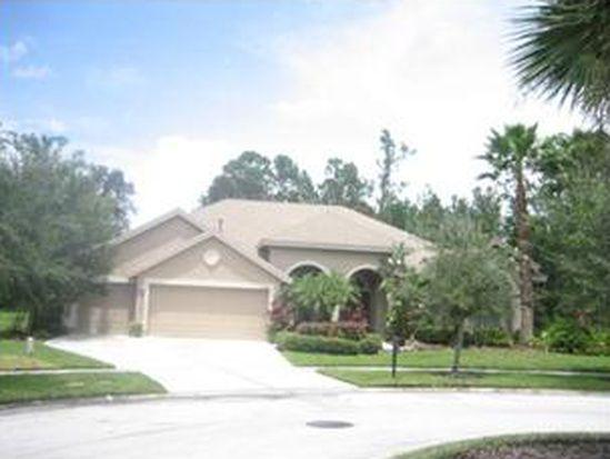 2841 Blue Springs Pl, Wesley Chapel, FL 33544