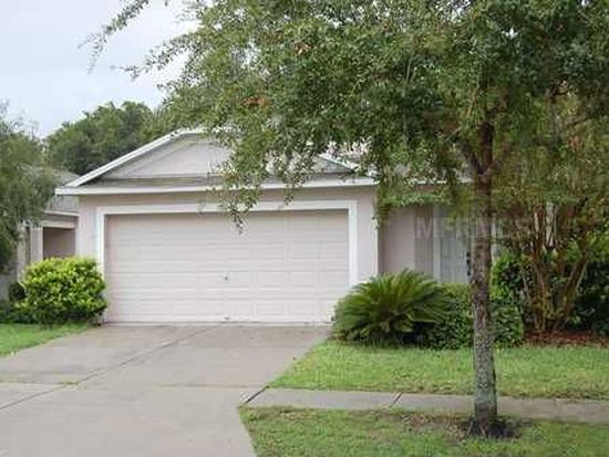18168 Canal Pointe St, Tampa, FL 33647