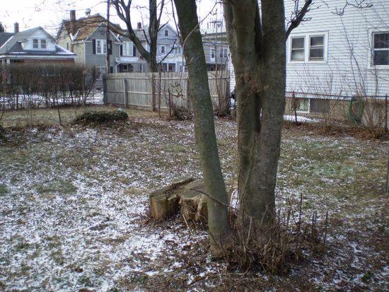 38 Wildwood Pl, Buffalo, NY 14210