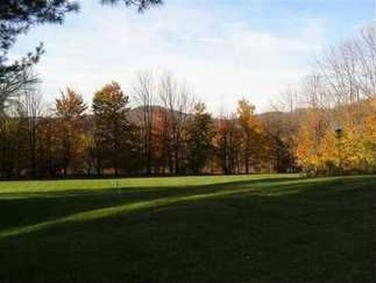 33 Youngs Hill Rd, Liberty, NY 12754