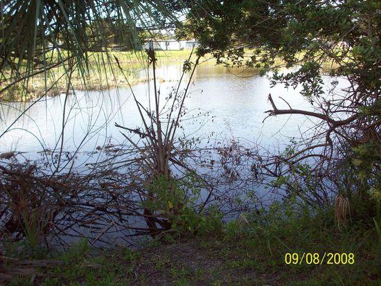6710 Leto Dr, Tampa, FL 33619