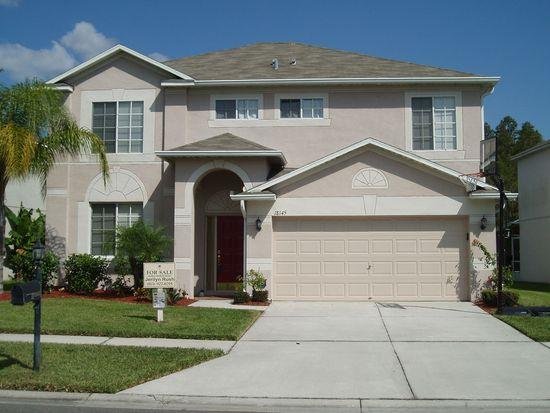18145 Sandy Pointe Dr, Tampa, FL 33647