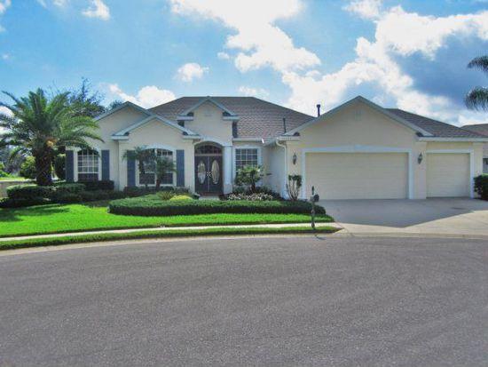 10724 Gooseberry Ct, Trinity, FL 34655