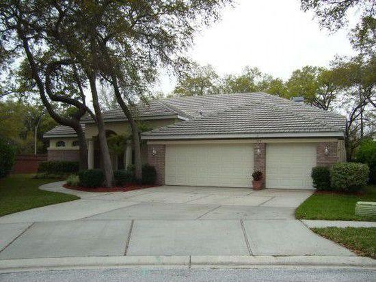 114 Old Oak Cir, Palm Harbor, FL 34683