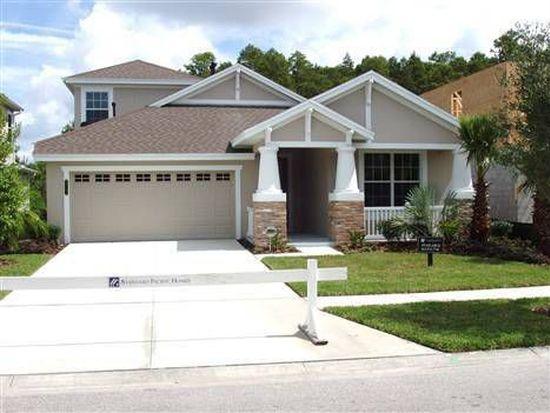20107 Heron Crossing Dr, Tampa, FL 33647
