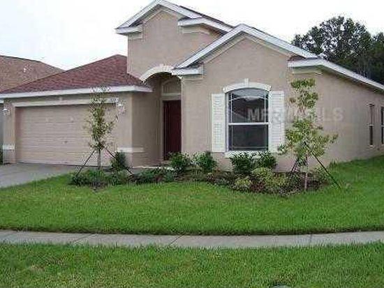 1172 Emerald Hill Way, Valrico, FL 33594