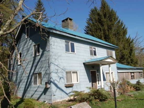 13041 State Highway 30, Downsville, NY 13755