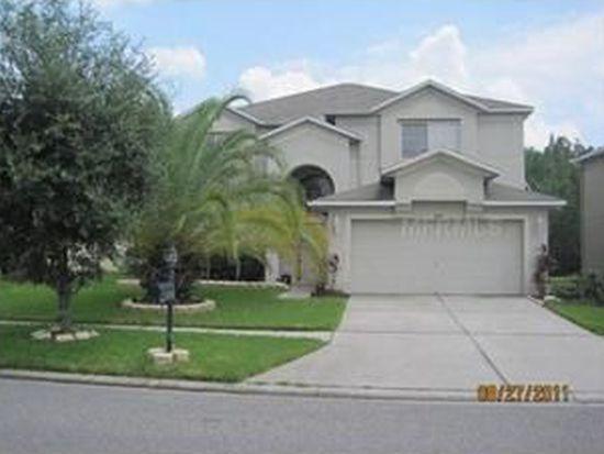 18147 Sandy Pointe Dr, Tampa, FL 33647