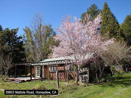 39803 Mattole Rd, Honeydew, CA 95545